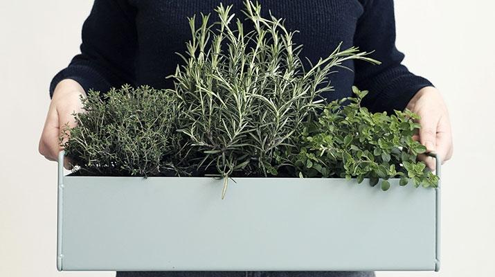 Plantekasser og Urtepotter
