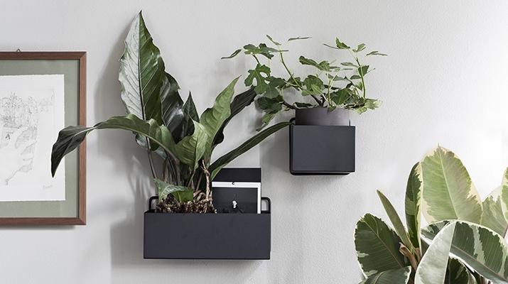 Plantekasser & Urtepotter