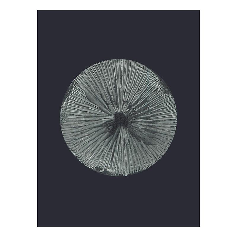 PernilleFolcarelliMushroom30x40cm-31