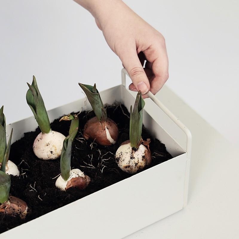 Ferm Living Plant Box Small Lysegrå-31
