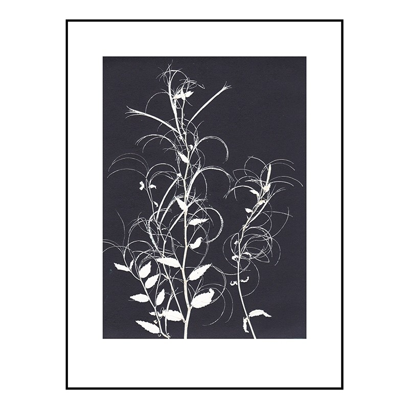 Pernille Folcarelli Willow Herb Black 30x40 cm-31