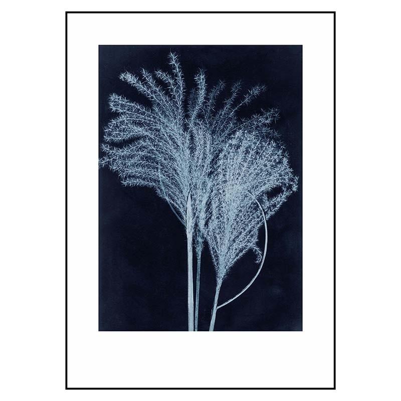 PernilleFolcarelliSilvergrassMidnightBlue50x70cm-31
