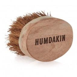 HumdakinBrsteLille-20