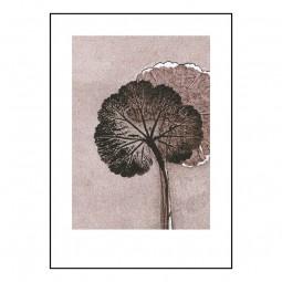 Pernille Folcarelli Geranium Mauve 100x140 cm-20