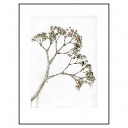 Pernille Folcarelli Gypso Khaki 100x140 cm-20