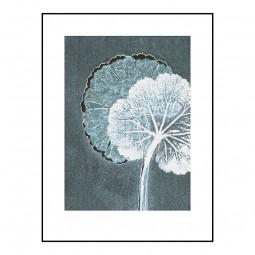 Pernille Folcarelli Geranium Teal 30x40 cm-20
