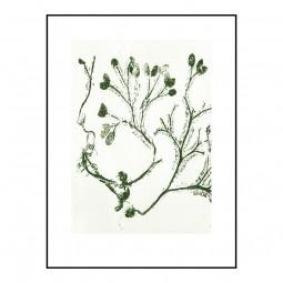 Pernille Folcarelli Seaweed Olive 30x40 cm-20