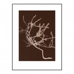 Pernille Folcarelli Heather Chocolate 30x40 cm-20