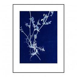 Pernille Folcarelli Vicia Royal Blue 30x40 cm-20