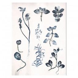 Pernille Folcarelli Garden Herbs 50x70 cm-20