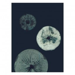 Pernille Folcarelli Mushroom 30x40 cm-20