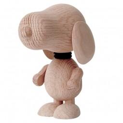 Boyhood Mr. Beagle Eg Stor-20