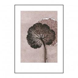 PernilleFolcarelliGeraniumMauve50x70cm-20