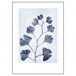 Pernille Folcarelli Ginkgo Ink 50x70 cm-20
