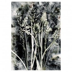 Pernille Folcarelli Grass Charcoal Tapet-20