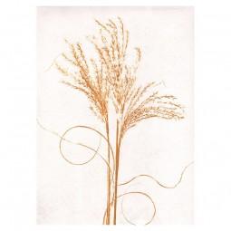 Pernille Folcarelli Silvergrass Mustard Tapet-20
