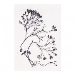 Pernille Folcarelli Seaweed Grey Vægtæppe 100x140 cm-20