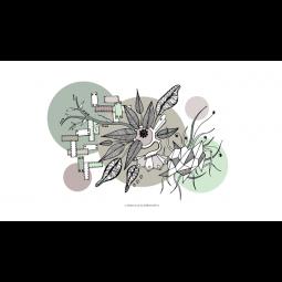 """Kasia Lilja """"Miss Bird"""" for SternShop (Version 4)-20"""