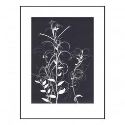 Pernille Folcarelli Willow Herb Black 30x40 cm-20
