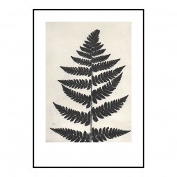 Pernille Folcarelli Fern Black 70x100 cm-20