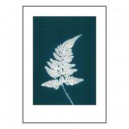 Pernille Folcarelli Fern Bluegreen 50x70 cm-20