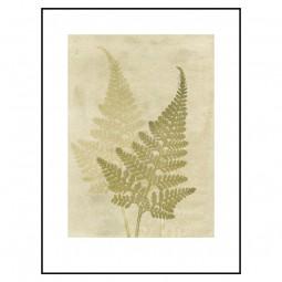 Pernille Folcarelli Fern Olive 30x40 cm-20