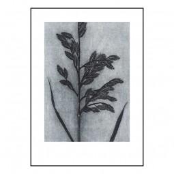 Pernille Folcarelli Grass Smoke 50x70 cm-20