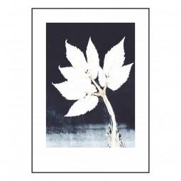 Pernille Folcarelli Goutweed Ink 50x70 cm-20